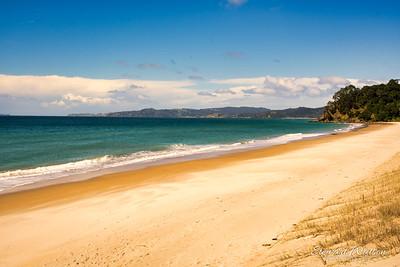 Whangapoa Beach