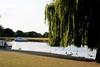 Thames 12