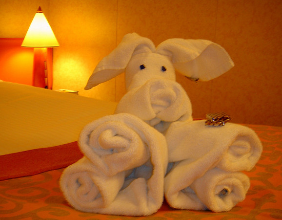 Had to take pictures of the adorable towel-animals our room steward would make for us every evenig aboard the Carnival Freedom!