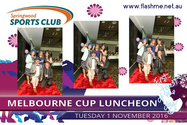 Melbourne Cup Luncheon - Springwood Sports - 1 November 2016