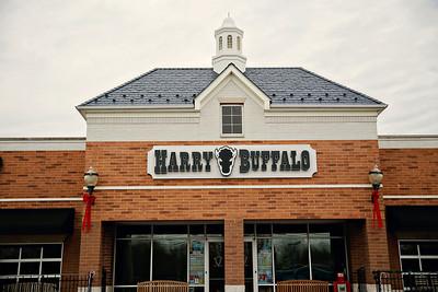 HarryBuffalo2012-8 copy 3