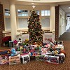 Toys for Tots Horizontal