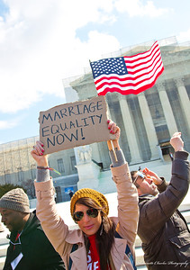 DOMA - demonstration 2013
