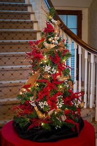 cso-guild-christmas-trees-2013-23
