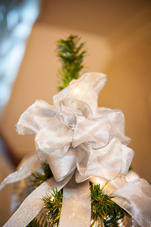 cso-guild-christmas-trees-2013-17