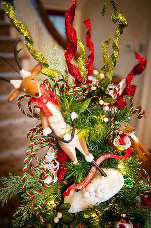 cso-guild-christmas-trees-2013-10