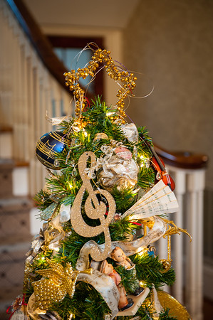 cso-guild-christmas-trees-2013-41