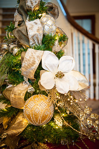 cso-guild-christmas-trees-2013-7