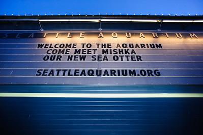 011March 04, 2015HALGRP_GlobalSales_AquariumBBKing