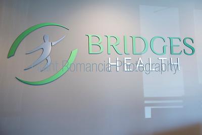 Bridges-003