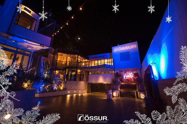 Ossur Holiday Party 12/1/17