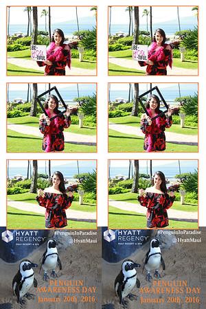 Hyatt Maui's Penguin Awareness Day 2015