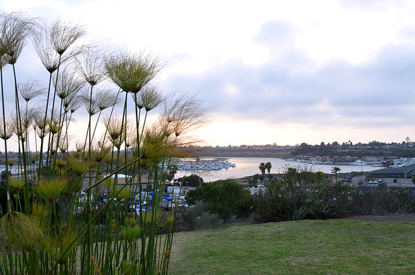 Southern California Edison, Hyatt Newport Beach