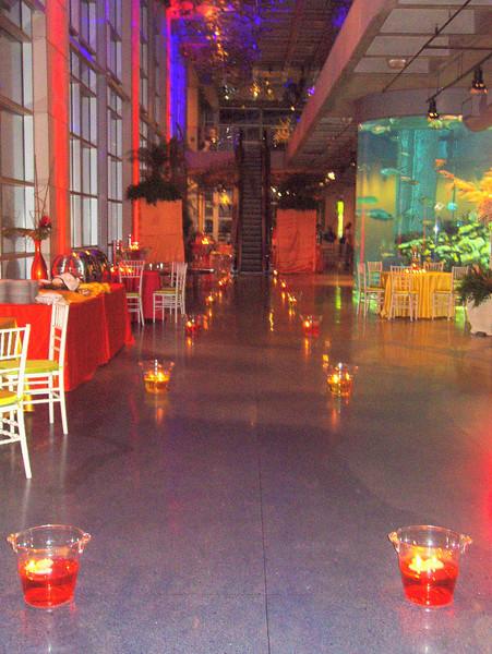 We guided guests upstairs for a tour of the aquarium, moving the tables you see here in place and moving our light buckets away.  By the time guests came downstairs, it was a different party! What a pleasure to produce corporate events in Charleston!
