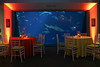 Guests proceeded to the Deep Ocean Tank on floor one. What a pleasure to produce corporate events in Charleston!