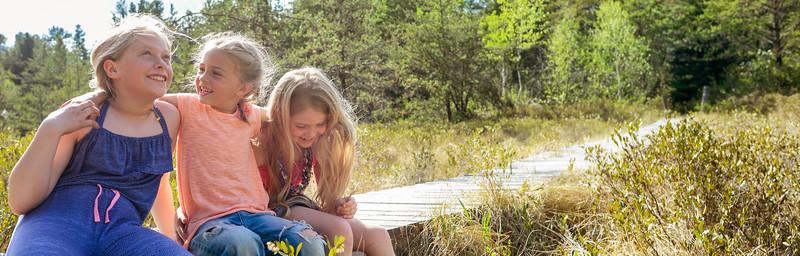 On Lilypad Trail 880 x 882