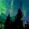 Northern Lights 01 880X282
