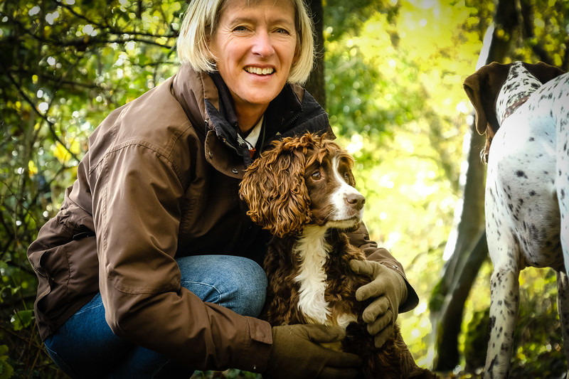 margot the pointer and tatty the spaniel enjoy the outdoors in corsham