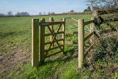 Celia's Gate