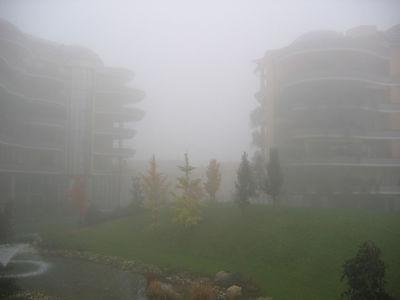 Un poco de neblina... GLUP