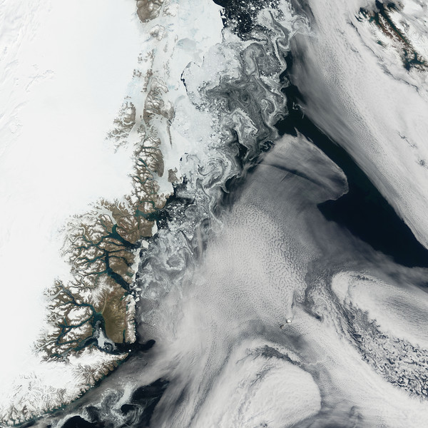 25 Jul 2006, Greenland --- Along the northeastern coast of Greenland, glaciers and ocean currents sometimes produce an eye-catching display of shapes and colors. On July 25, 2006, the Moderate Resolution Imaging Spectroradiometer (MODIS) flying onboard NASA's Terra satellite caught such a display. Greenland's coast is riddled with fjords- glacier-carved canyons flooded by seawater. In several of the fjords, the water appears pale turquoise, in contrast to the dark blue of the ocean water. This lighter shade results from fine sediment. The sediment particles are small enough to remain suspended in water, lightening its color. East of the network of fjords, pale blue sea ice swirls along Greenland's coast in a paisley pattern. --- Image by © NASA/Corbis