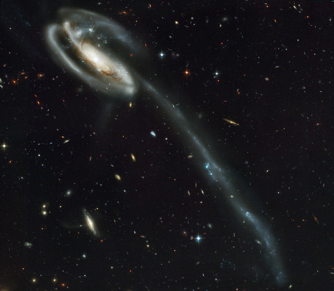 A 'wallpaper' of distant galaxies is a stunning backdrop for a runaway galaxy