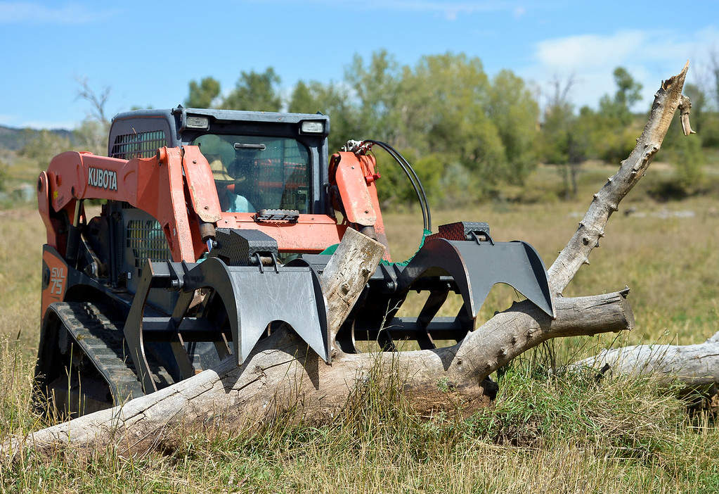 . LONGMONT, CO - AUG. 30, 2018:  Adam Tveten uses his skid steer Aug. 30 to remove a tree from a pasture. Tveten purchased the skid steer with state grant money to repair the flood damage to his ranch along the Little Thompson River north of Longmont. (Photo by Lewis Geyer/Staff Photographer)