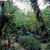 013 Costa Rica