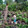 012 Lankester Botanical Gardens, Cartago