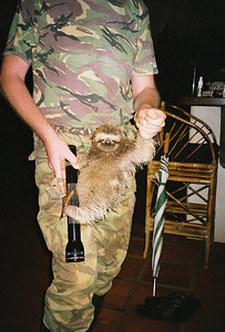 Phillip and baby sloth at bar
