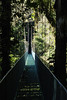 one of the many hanging bridges