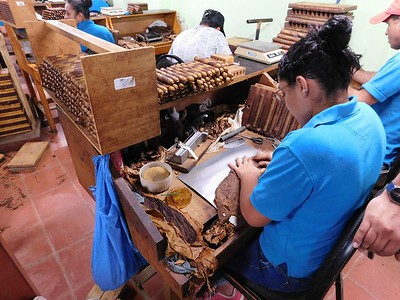 """Touring Tobacos de Costa Rica. This cigar factory is just 30 minutes from Chris' dad's house. This cigar maker is putting on a two-color """"barber pole"""" wrapper as the final part of assembling a cigar. The most experienced rollers will make 350 cigars in a day."""