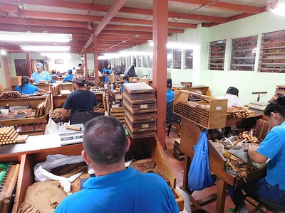 Touring Tobacos de Costa Rica. Rollers are making dozens of different cigars in the rolling room. The factory employs about 75 workers.