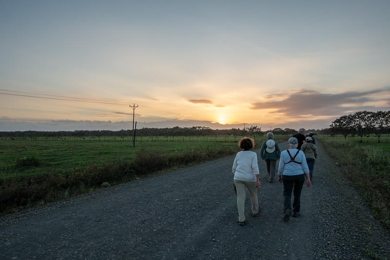 Walking the Cano Negro road at dusk