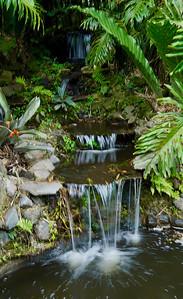 Lankester Botanical Garden