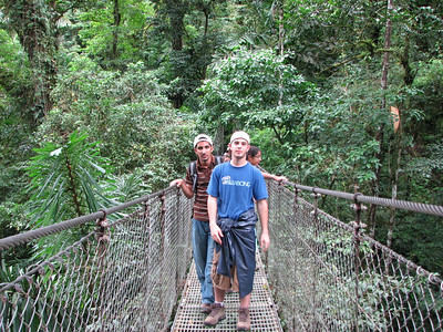 116 - Hanging bridges