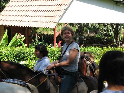 184 - Horseback riding