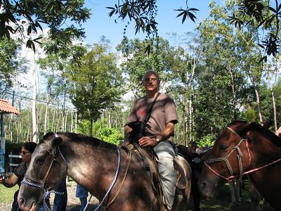 181 - Horseback riding