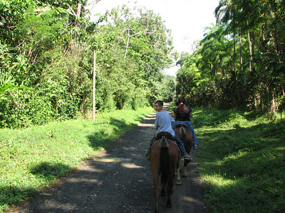 187 - Horseback riding