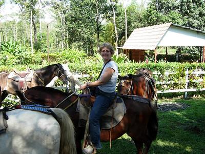 181 3 - Horseback riding