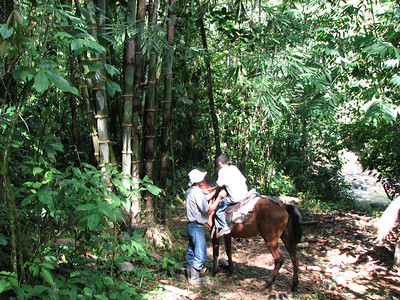188 - Horseback riding, half way done
