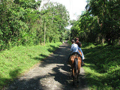 186 - Horseback riding