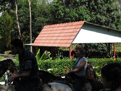 183 - Horseback riding