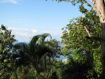 172 - View from the room in Hotel Costa Verde Manuel Antonio