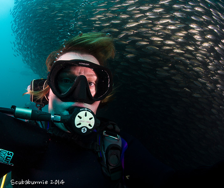 Bait ball selfie - Galapagos by Tracey Jennings