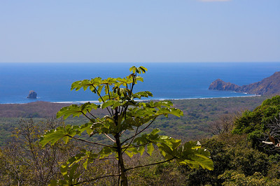 Over looking Playa Naranjo within Santa Rosa National Park. A dry tropical forest.
