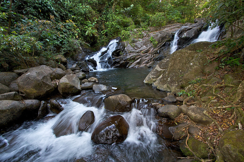 Santa Maria National Park. A tropical cloud forest.
