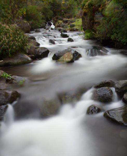 Costa Rican stream.