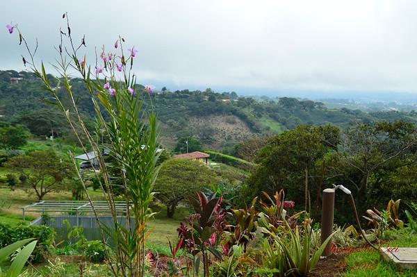 Costa Rica - Paul/Mer 10-16