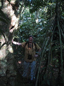 Bruce in primary forest at Earth Univ; Walking Palm on right